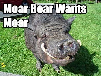 moar-boar.jpg