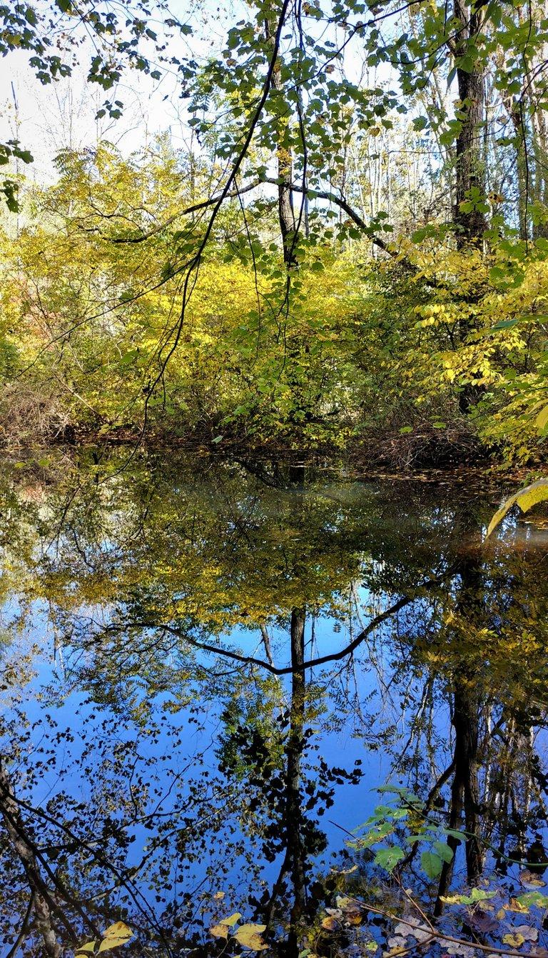 reflectionhunters12320212ok.jpg