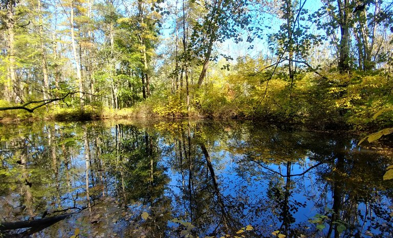 reflectionhunters12320217ok.jpg