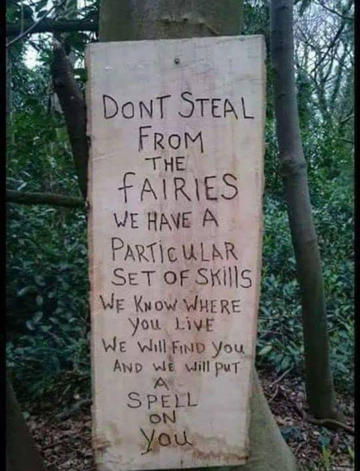 don't steal from faeries.jpg