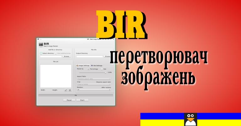 bir_title_big.png