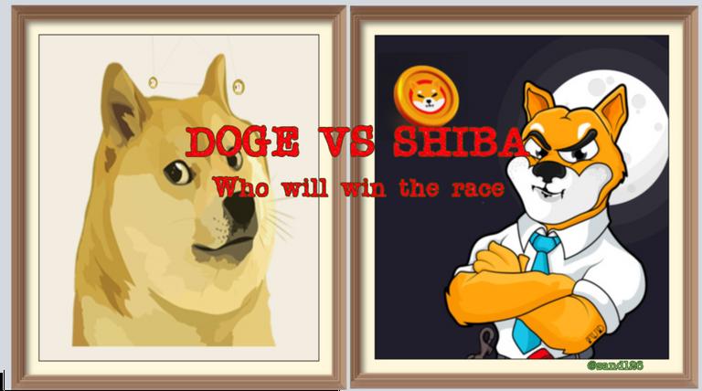 doge_vs_shiba.png