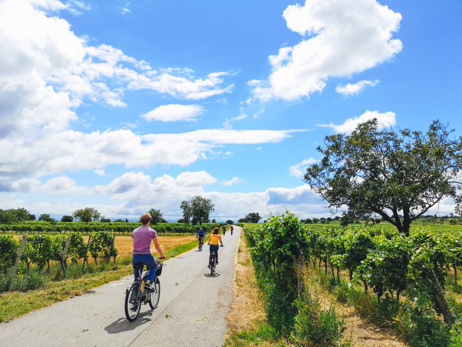 The flat nature of Burgenland is perfect for relaxing cycling. Photo by Alis Monte [CC BY-SA 4.0], via Connecting the Dots