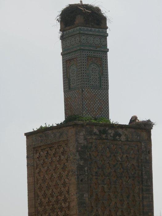 Morocco 061.JPG