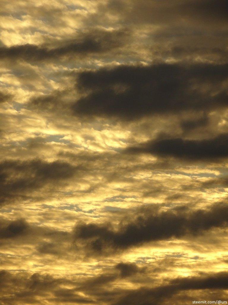 yellow sky1.jpg