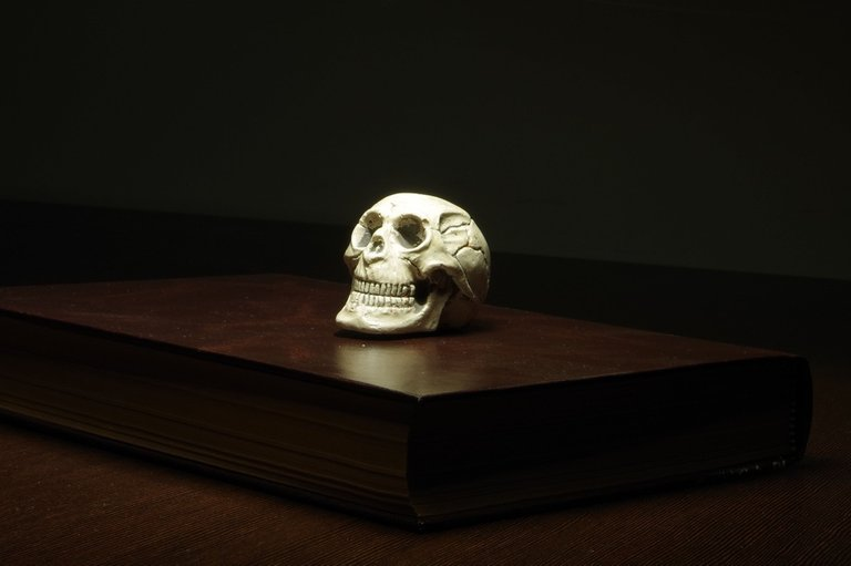 wood-mystery-darkness-paper-skull-sculpture-650268-pxhere.com.jpg