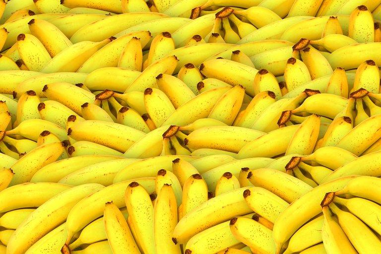 bananas-1119790_1280.jpg