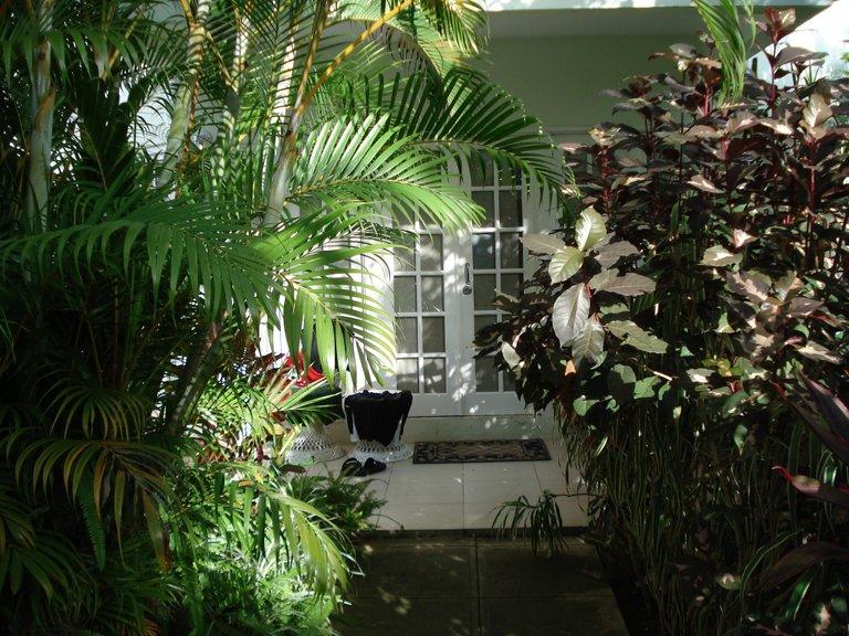 Jamaica 2014 139.jpg