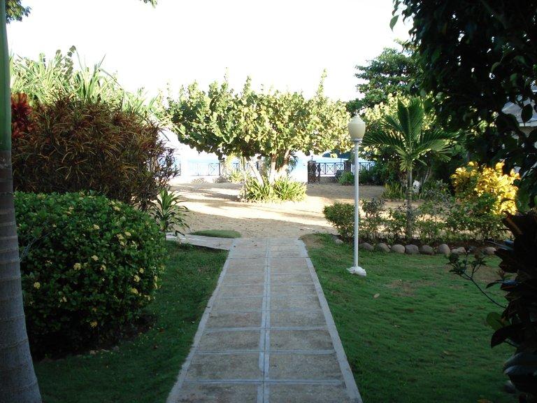 Jamaica 2014 020.jpg