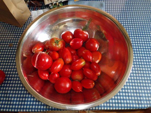 Tomato harvest crop August 2020.jpg