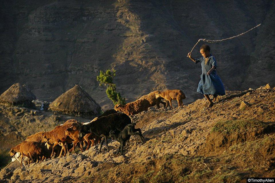 EthiopiaSimienTimothyAllen341.jpg