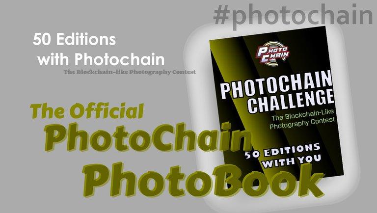 photochainebookpostcover.jpg