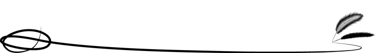 lineas-negras-png-8-transparent.png