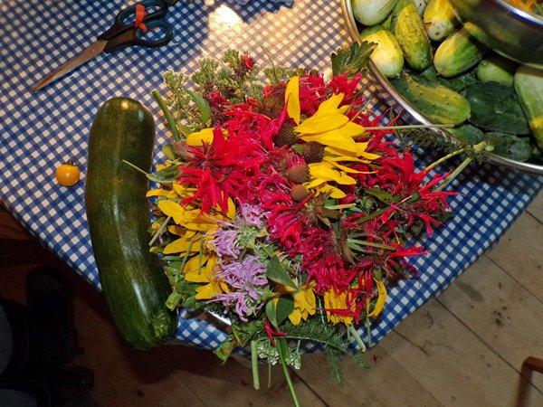 Zuchinni, herbs for treats crop July 2020.jpg