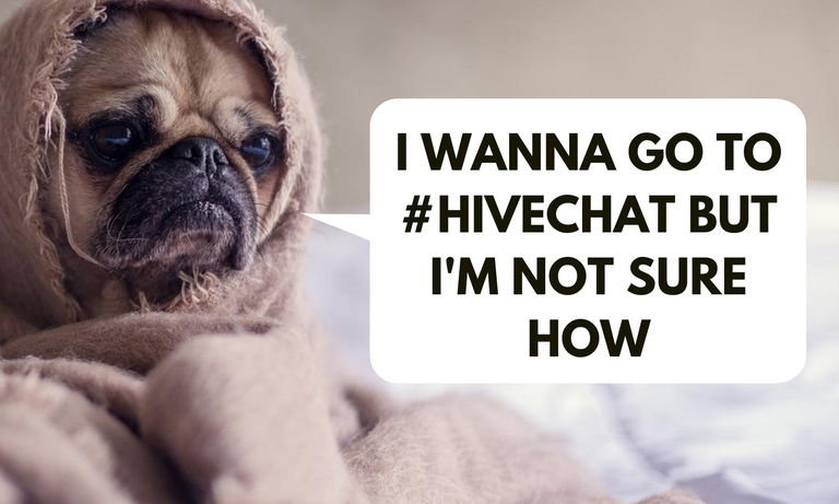 I wanna go to hivechat but I'm not sure how.png