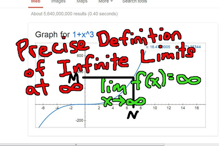 Precise Definition of Infinite Limits at Infinity.jpeg