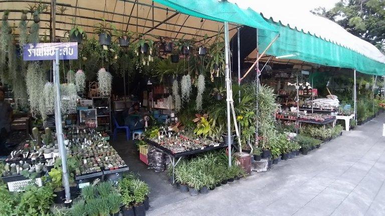 dusit_temples_bangkok_spet_2020_286.jpg