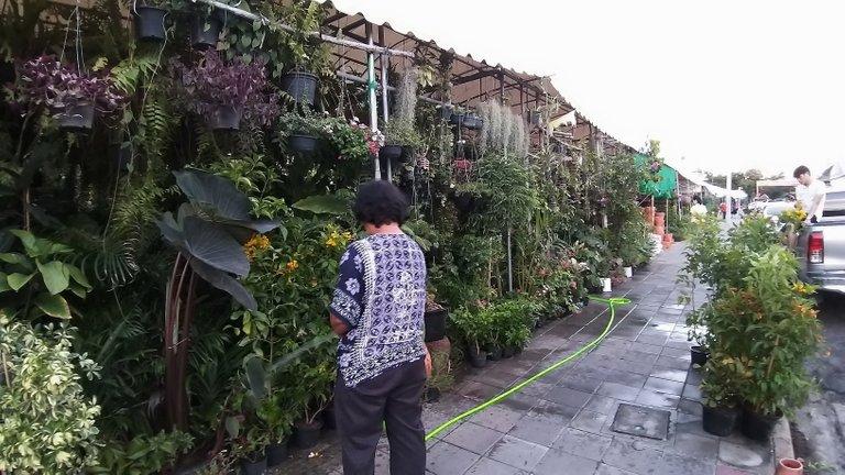 dusit_temples_bangkok_spet_2020_325.jpg