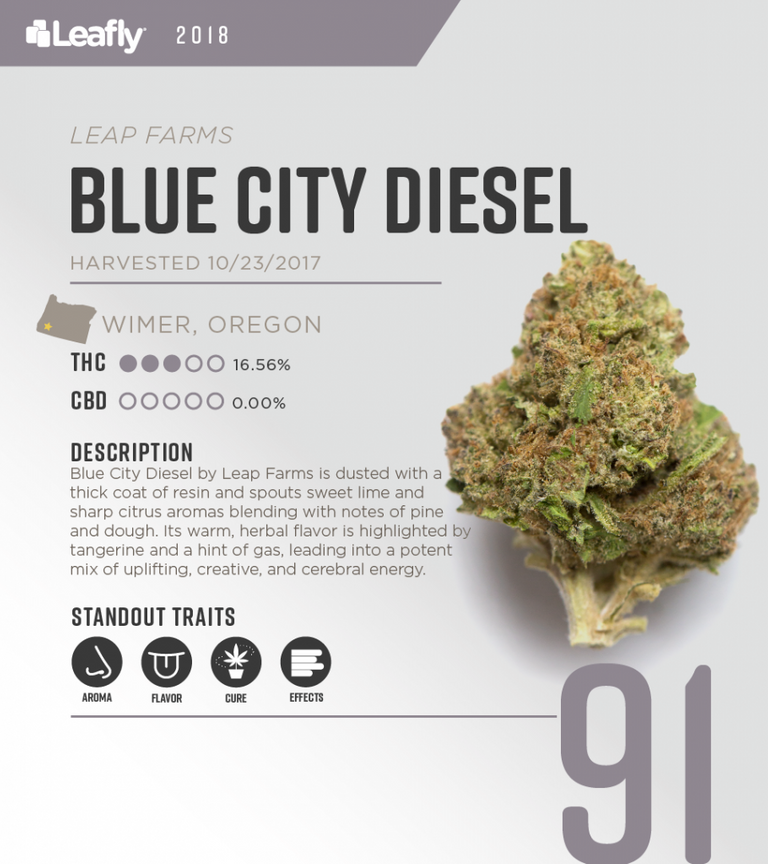 Blue-City-Diesel-Score-Card-910x1024.png