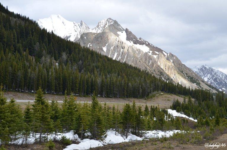 peter lougheed provincial park.jpg
