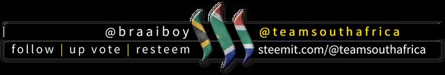 BraaiBoy TeamSouthAfrica Footer.png