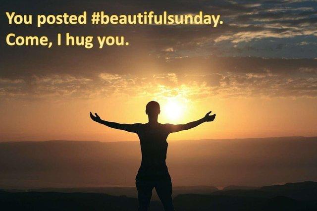 Sunday Hug