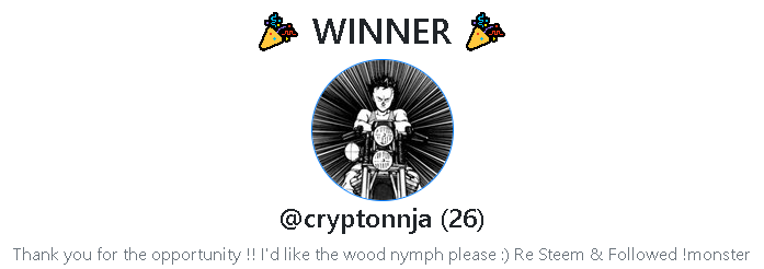 winner #1