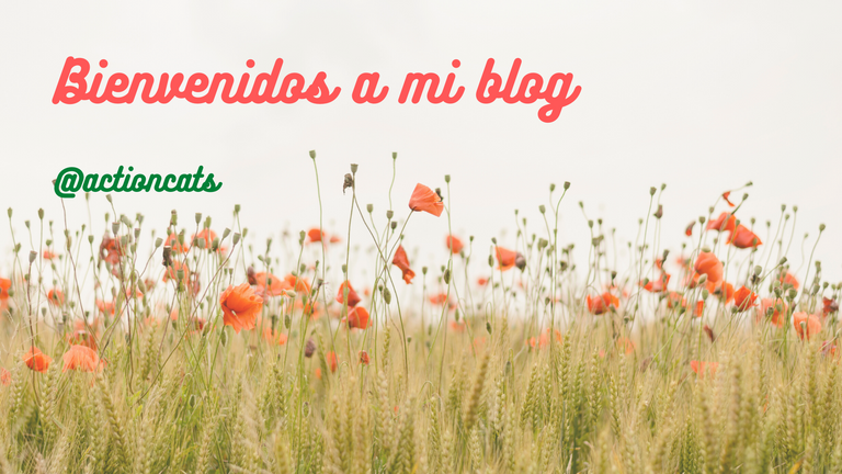 Bienvenidos a mi blog.png