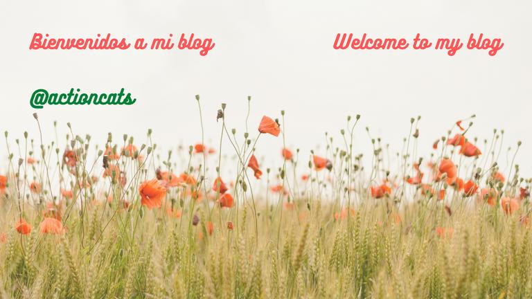 Bienvenidos a mi blog 2 idiomas.png