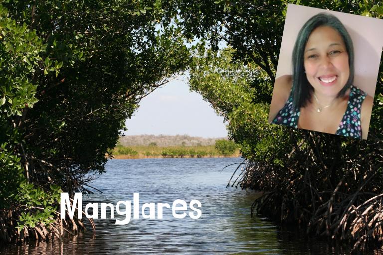 Manglares.png