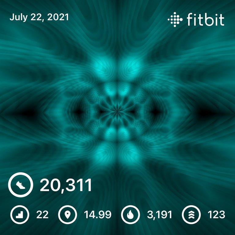 289D392F-FC3B-4F02-9A43-F6823D746BBE.jpeg