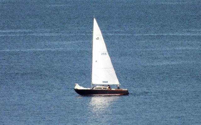 1006-Sailboat.jpg