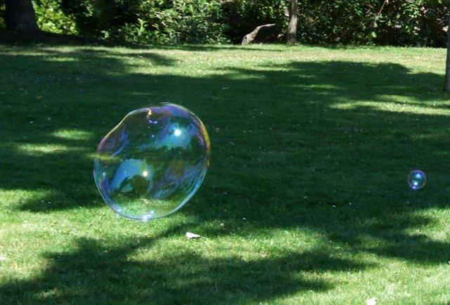 0733-Bubble.jpg