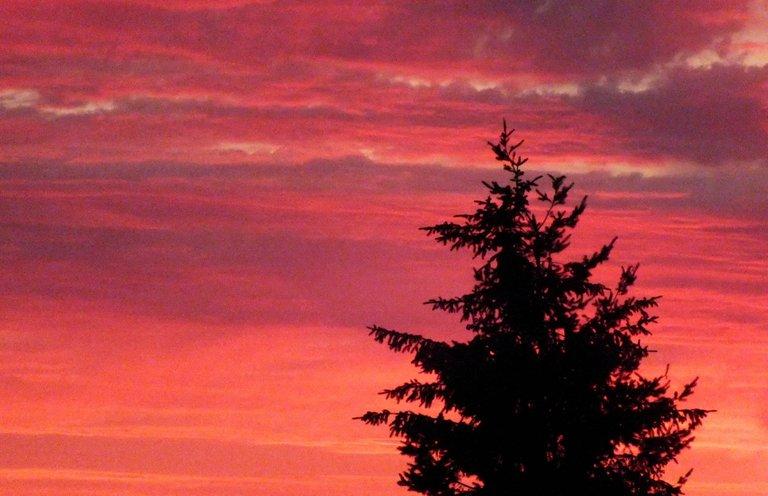 0211-Sunset03.jpg