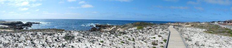 Monterey 9.jpg