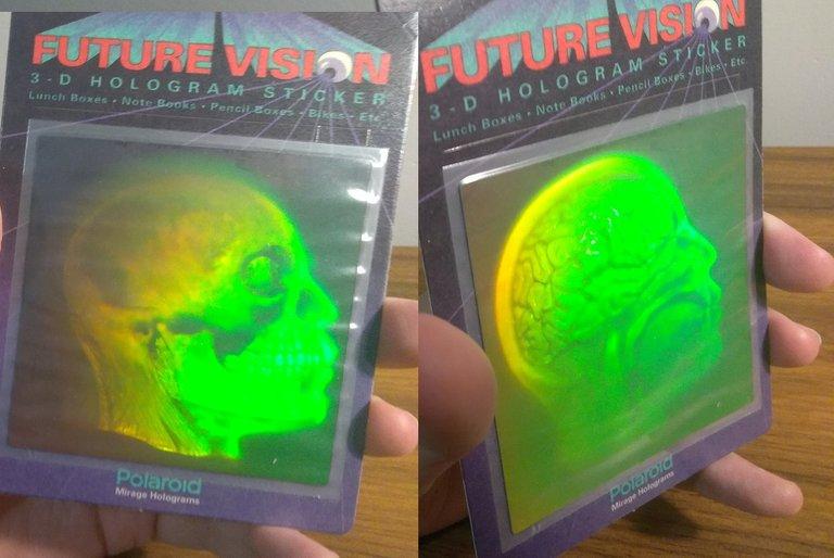 skull-brain hologram.jpg