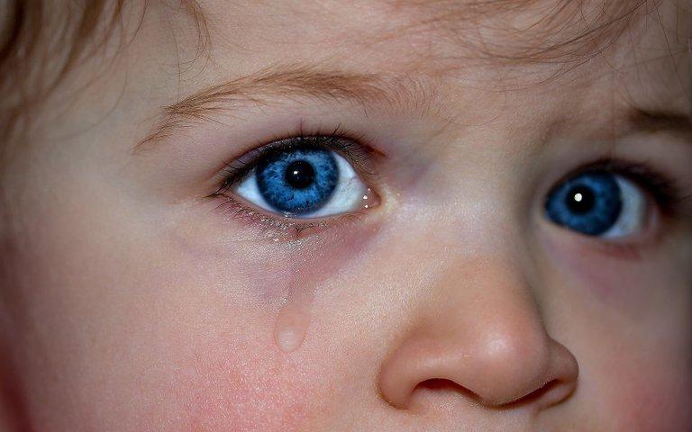 childrens-eyes-1914519_1920.jpg