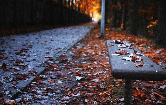 bench-3023283_640.jpg