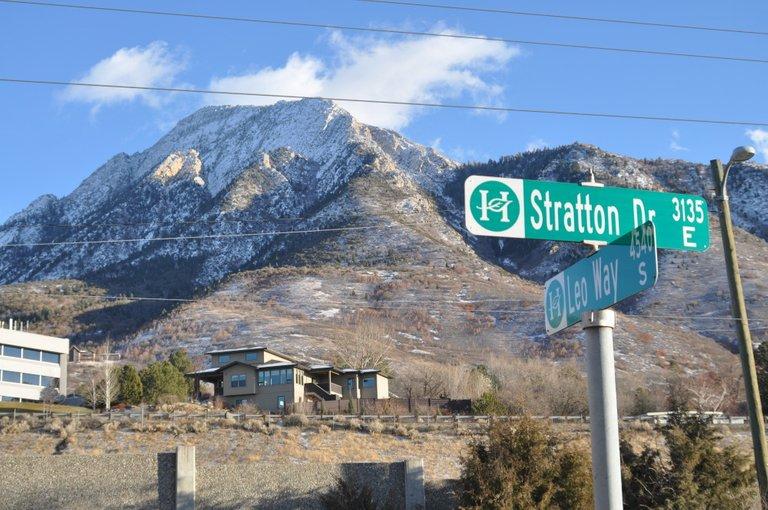 Stratton_Leo.jpg