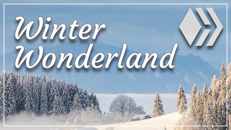 Winter Wonderland   Photo 52, 2020 Challenge