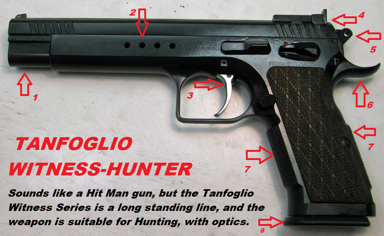 10mm TANFOGLIO WITNESS HUNTER annotated.png