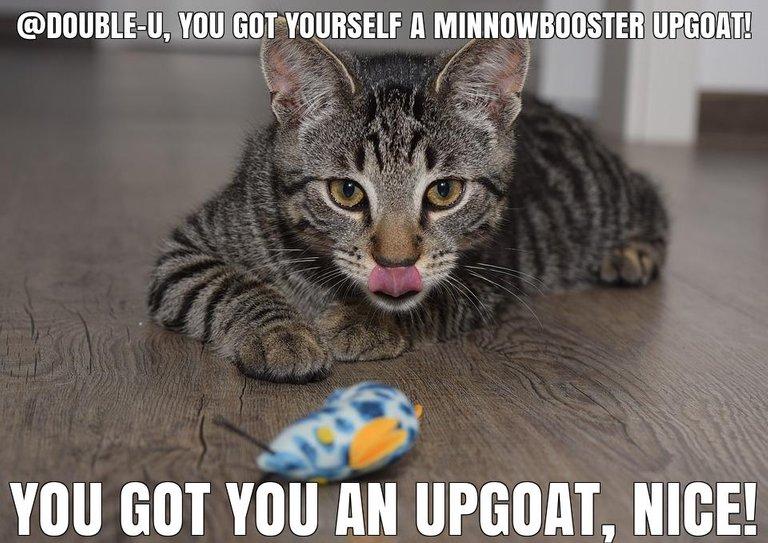 @double-u got you a $1.64 @minnowbooster upgoat, nice!