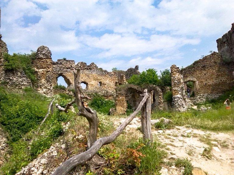Ruins of the castle Čičva