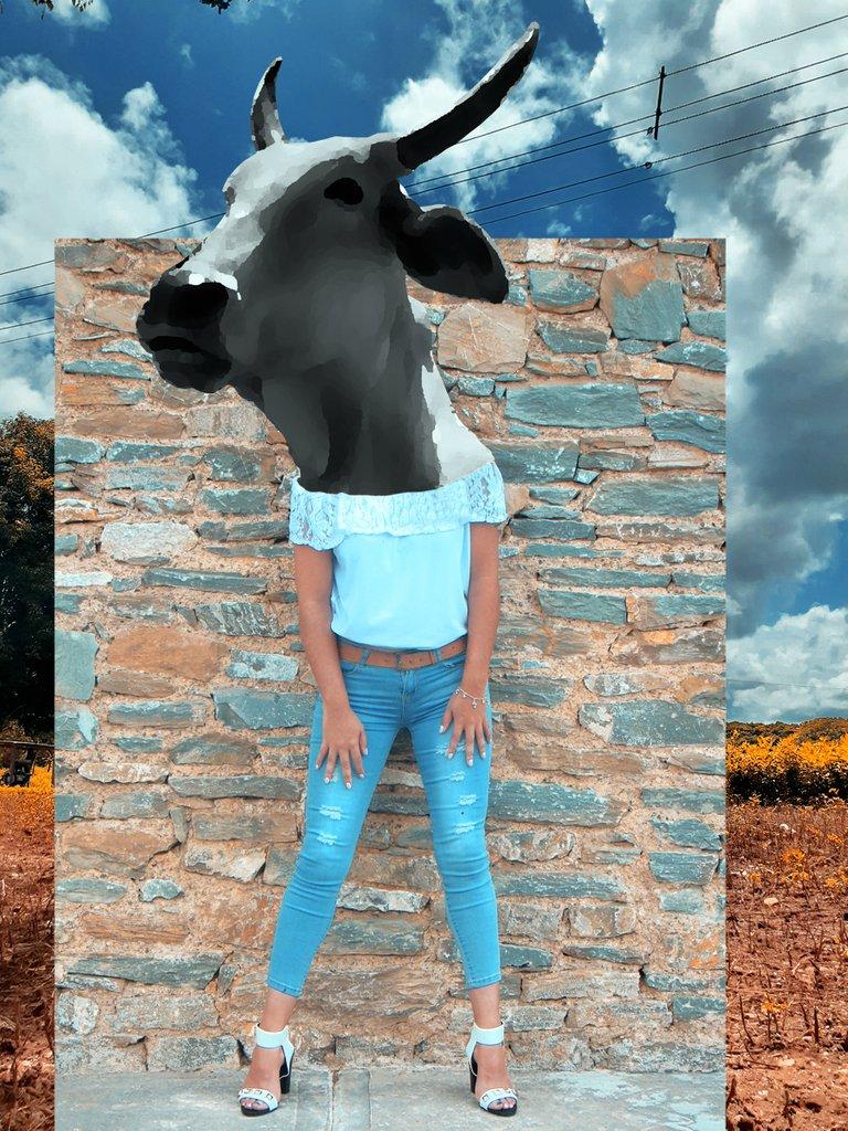 cabeza de vaca 6.jpg