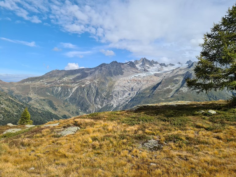 Vue sur l'Aiguille de Tour et le Glacier de Saleina