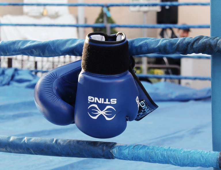 Punching gloves.jpg
