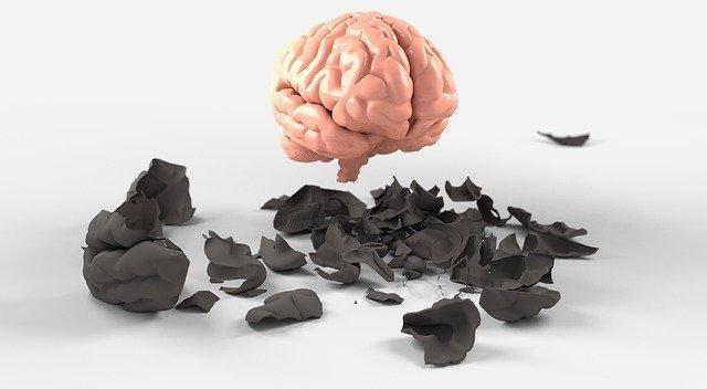 brain3438742_640.jpg
