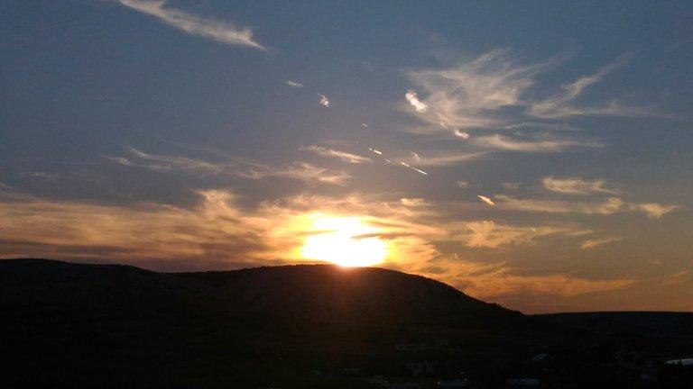 suns4.jpg