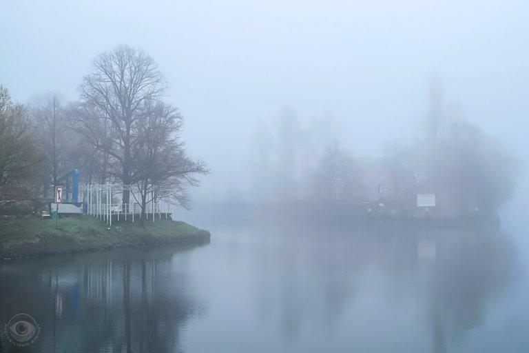 Dense Morning Fog