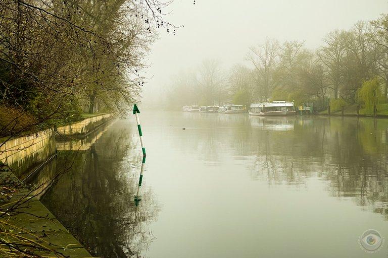 Foggy Spree River